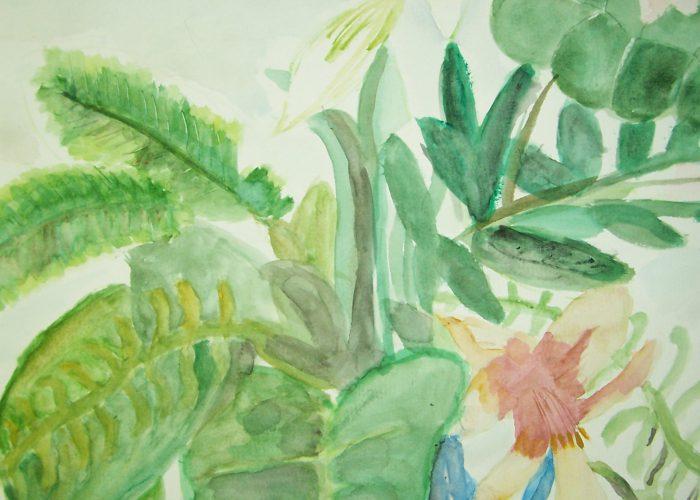 les bloemen en planten aquarel