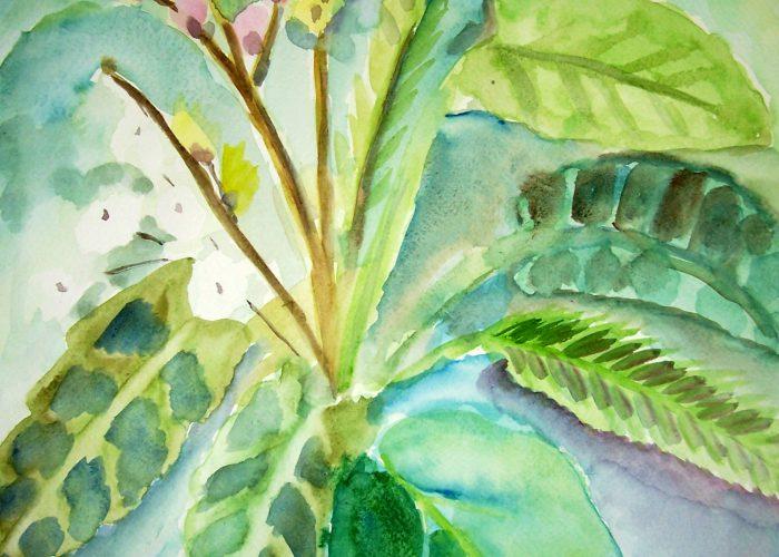 bloemen en planten aquarelverf